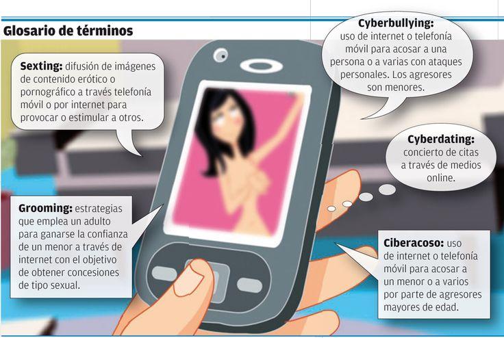Glosario de términos ligados al ciberacoso - Gráficos en FARODEVIGO.es