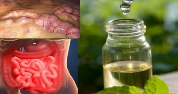 Un articol de Maya     Multe persoane consuma alimente care sunt cunoscute la nivel mondial ca produse nocive organismului nostru. Consumul ...