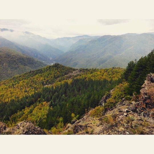 Monte Gratra, Val D'Aveto, Piacenza, Italy #hills #appennino #italy #mountains #autumn ©Annalisa Turolla