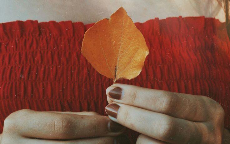 Autumn, outono, fall, leaves, autumn leaves, fall leaves
