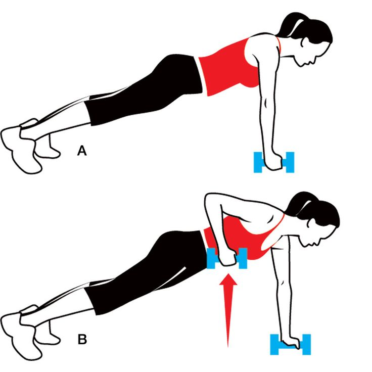 arms, back, & core