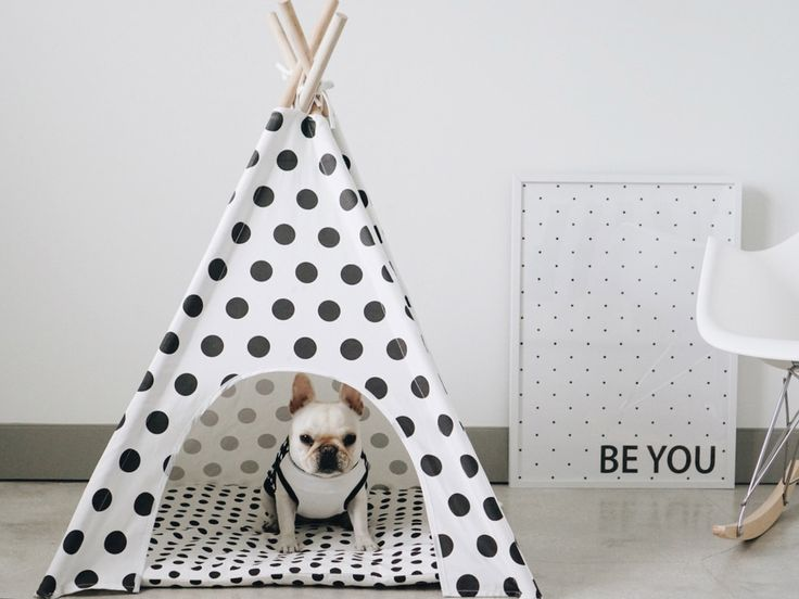 68 best gilbert images on pinterest cat teepee dog and dog polka dots dog teepee solutioingenieria Choice Image