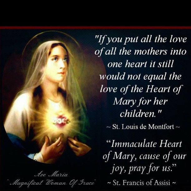 Immaculate Heart of Mary, cause of our joy, pray for us. - St. Francis of Assisi