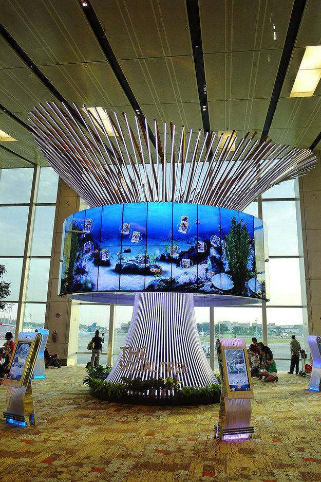 18 Things You Didn't Know You Can Do At Changi Airport