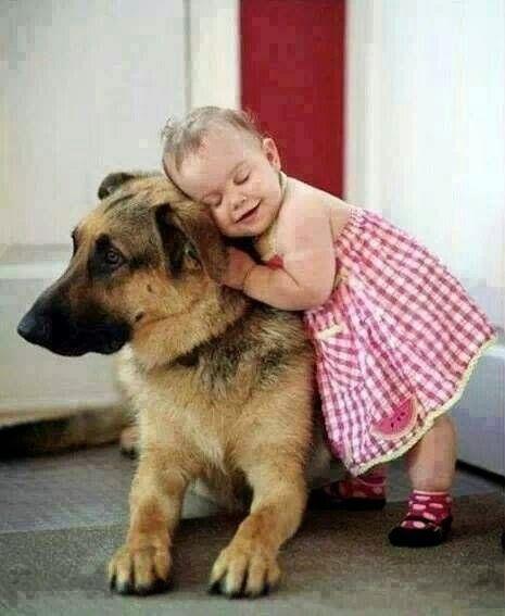Quando eu olho nos olhos de um animal, eu vejo um ser vivo. Eu vejo um amigo. Eu sinto uma alma❣