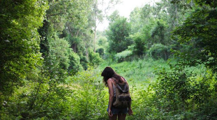 Statt herkömmliche Arzneien suchen gerade Frauen immer öfter sanfte, natürliche Alternativen. Lerne mehr über klassische Wildpflanzen der Frauenheilkunde.