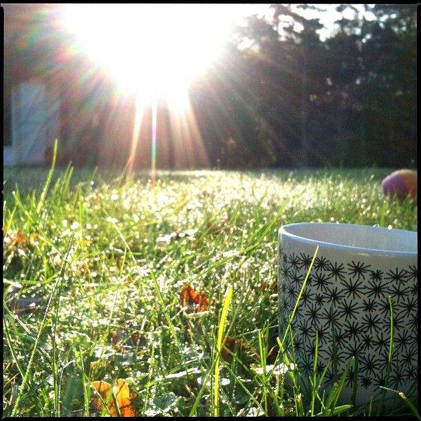 After every storm comes a sunny day ☀ GM you all #nofilter  #mymorningview  #morningroutine #morninghabits  #morningcoffee #lejournaldunetasseacafé #morninglight #bonjour #coffee #sunrise #lataillehaute #everydaymagic #elevatetheeveryday