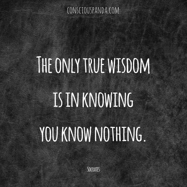 Philosophical Quotes: Best 25+ Famous Philosophy Quotes Ideas On Pinterest