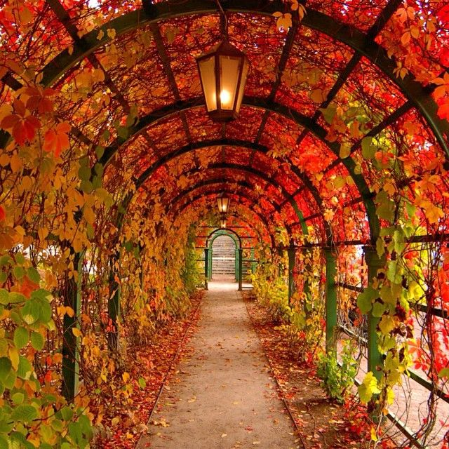 18 Beautiful Photos Of Fall From Around The World Autumn Instagram And Scenery