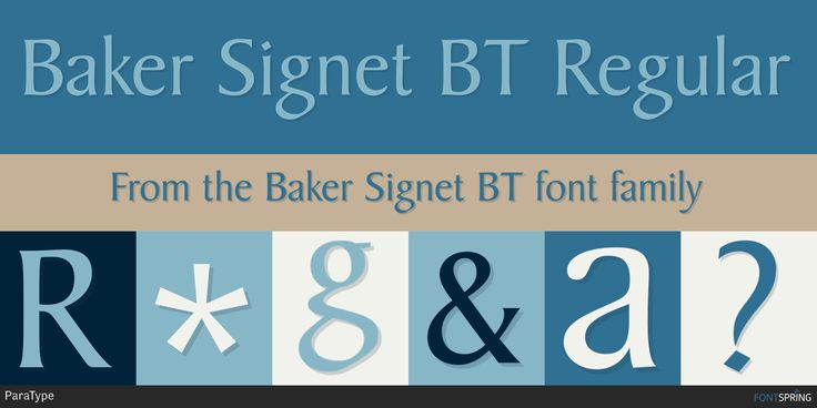 Check out the Baker Signet BT font at Fontspring.