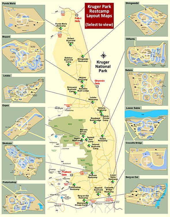 301 best Kruger National Park images on Pinterest | Kruger