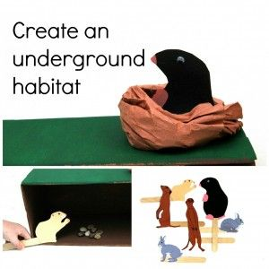 Dig into Exploring Underground Animals from The Hands-On Homeschooler