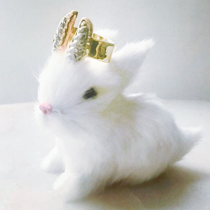 #thursdayinspiration / Inspired by Diana! #dianaprincessofwales #love #ring #pyritejewelry #diamonds #carvedgemstone #cuterabbits #whiterabbit #kawaii