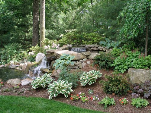 332 best images about shade garden plants on pinterest for Pond shade ideas