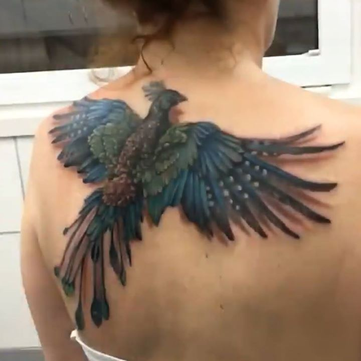 17 best ideas about phoenix back tattoo on pinterest phoenix drawing phoenix tattoos and phoenix. Black Bedroom Furniture Sets. Home Design Ideas