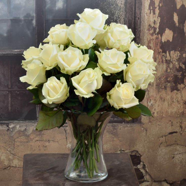 Biele ruže