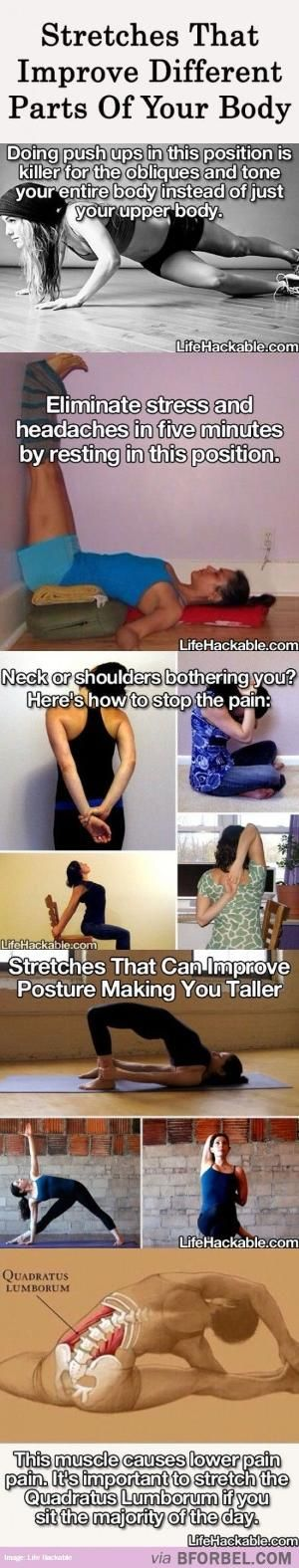 Types Of Stretches That Improve Different Parts Of Your Body by llmnranch