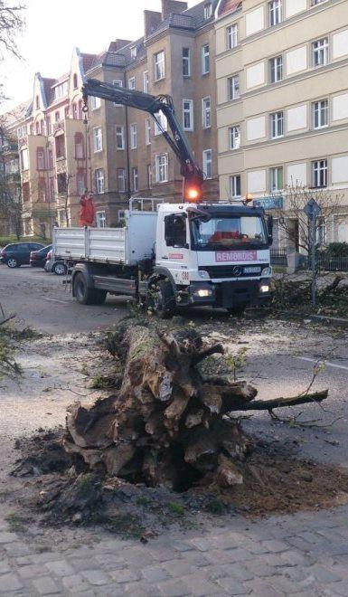 Kilka ulic Szczecina było bez prądu. Wiatr zniszczył linie energetyczne i połamał drzewa - http://kontakt24.tvn24.pl/sg/kilka-ulic-szczecina-bylo-bez-pradu-wiatr-zniszczyl-linie-energetyczne-i-polamal-drzewa,164541.html