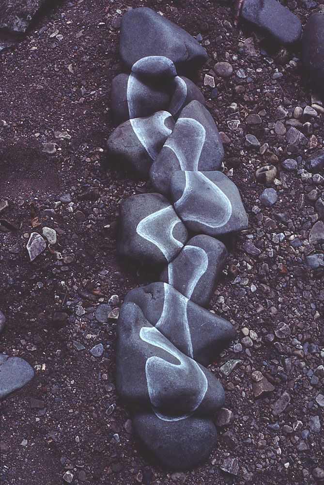 an introduction to the life and work of andy goldsworthy