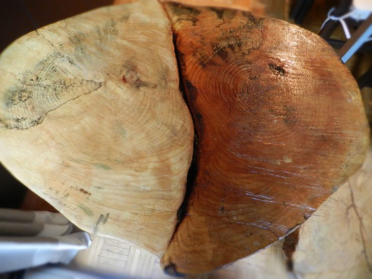 Tree Rings-One of our most favorite pieces ``When two become one``