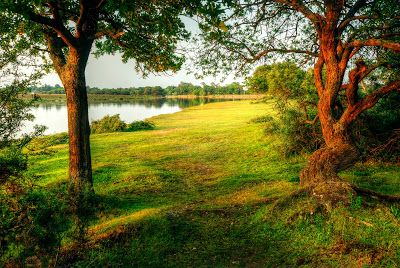 12 fotos de paisajes naturales - Paysages de la nature | Banco de Imágenes, Fotos y Postales...