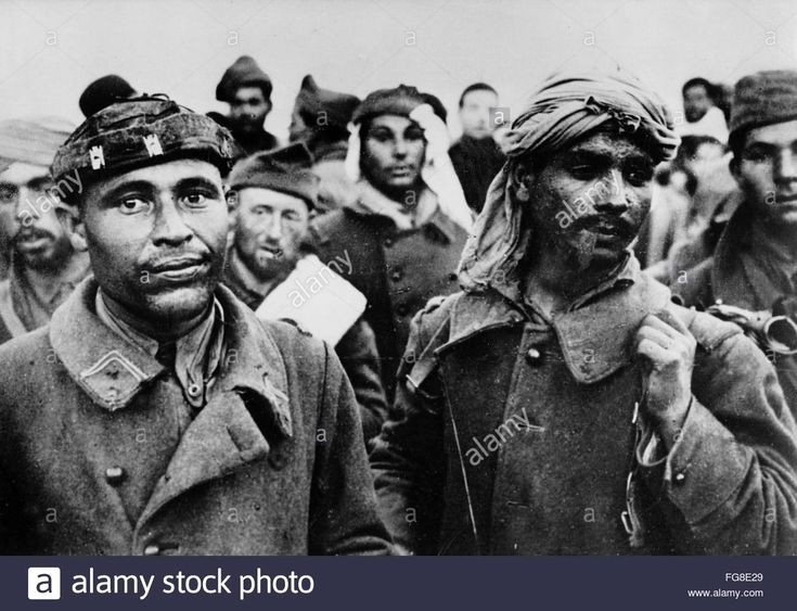 The image from the Nazi Propaganda depicts members of the English auxiliary forces in Tunisia, published 17 February 1943. Place unknown. Photo: Berliner Verlag/Archiv - FG8E29 from Alamy's library of millions of high resolution stock photos, illustrations and vectors. Pin by Paolo Marzioli