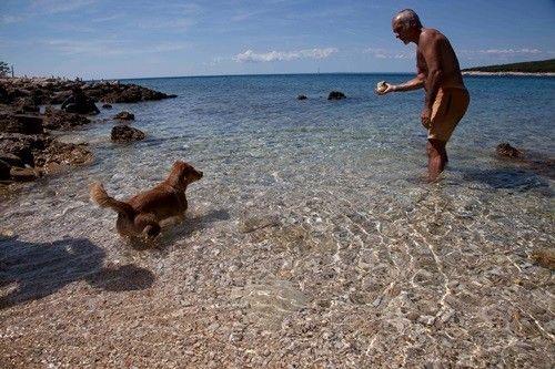 Campingurlaub mit Hund im Mobilheim in Kroatien