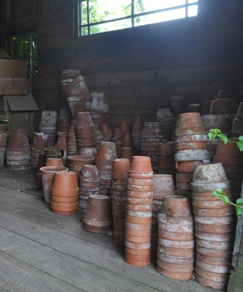 Peter Rabbit potting shed