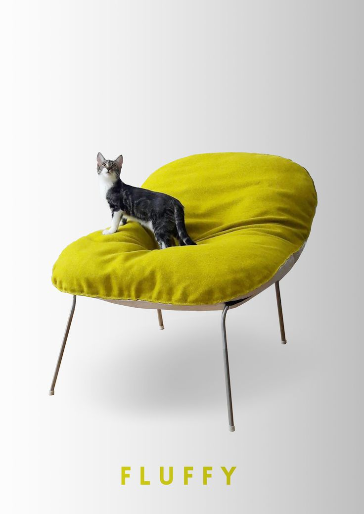 « Fluffy » est une assise enveloppante, souple, généreuse et voluptueuse.  Une housse amovible englobe la structure et laisse apparaître la finesse du piétement.  Sa fermeture éclair souligne les courbes par un geste graphique.