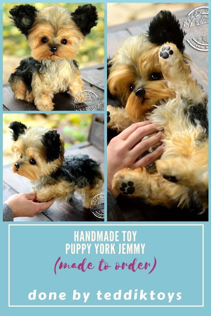 Yorkshire Terrier Puppy Yorkie Doggies Handmade Toys Possible To Order Price 450 More Detailed Description You Can Find At Our Store Etsy