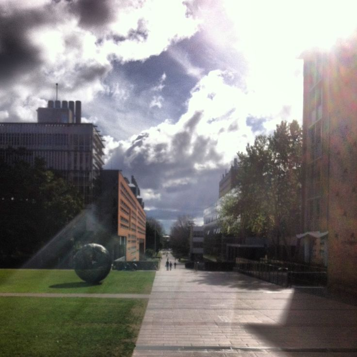 The sun is shining through @UNSW on the University Mall