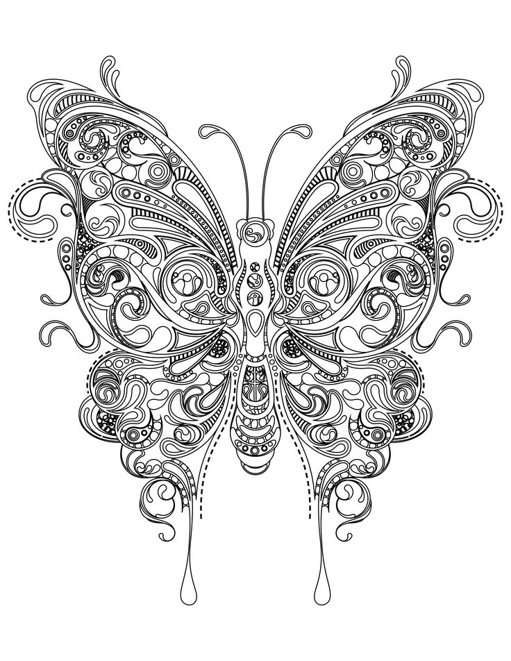 coloriage papillon trs difficile imprimer