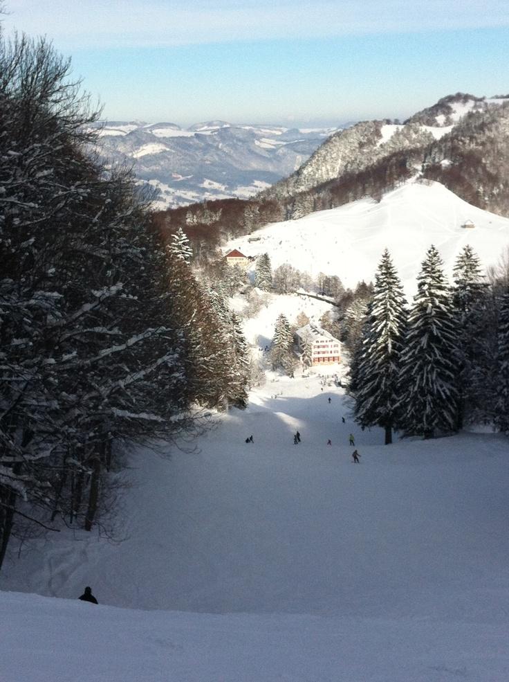 9. Feb 2013 - Balmberg - Kähle slope