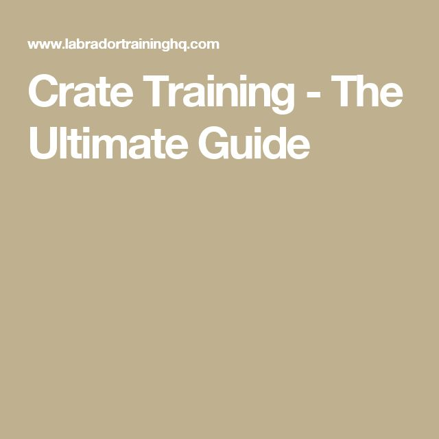 Crate Training - The Ultimate Guide