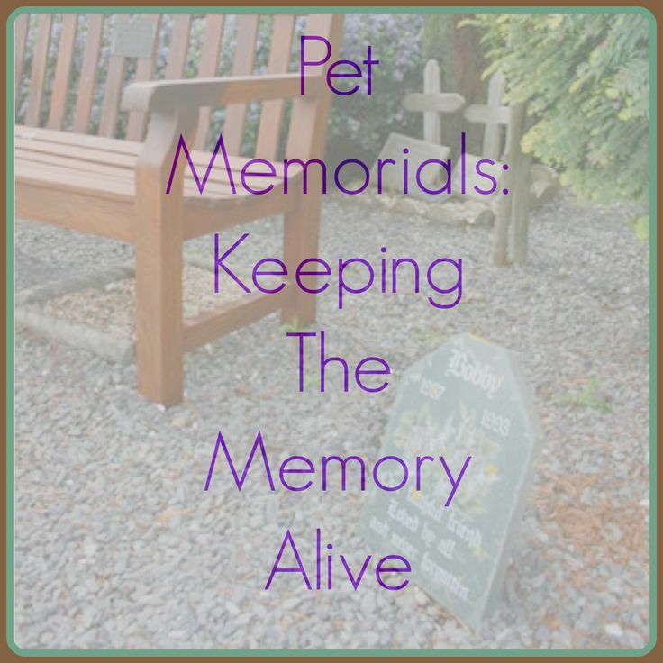 Saying goodbye to your pet is never an easy thing to do, there are many stages to grief and losing a pet can feel just as harrowing as losing a human loved one. Creating pet memorials can be a great comfort in the grieving process.