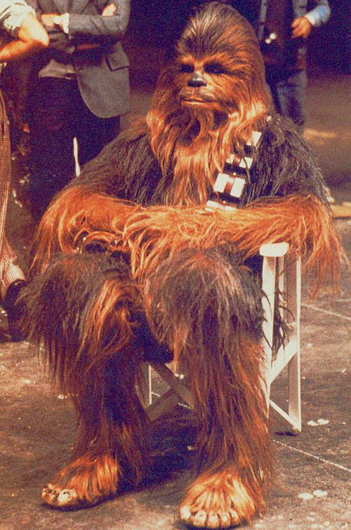 Peter Mayhew on the set of Star Wars (1977)                                                                                                                                                                                 More