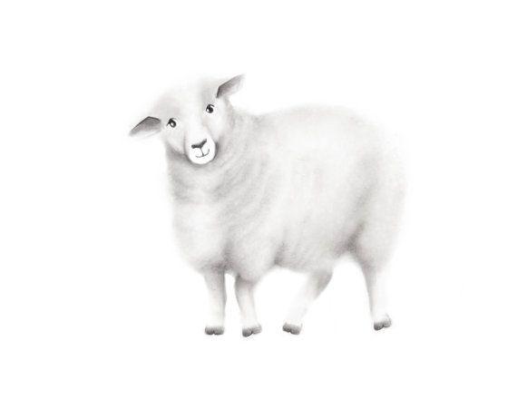 Art de moutons Animal de ferme dessin au crayon par studioQgallery