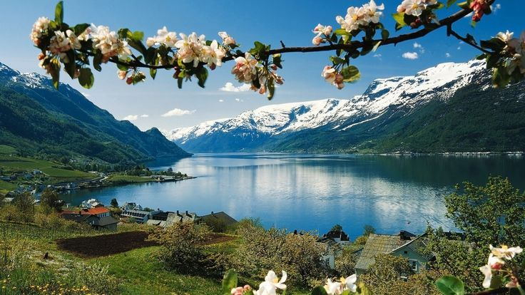 TIPS TO DO IN BERGEN NORWAY Norway Norwegian Bergen travel travelling
