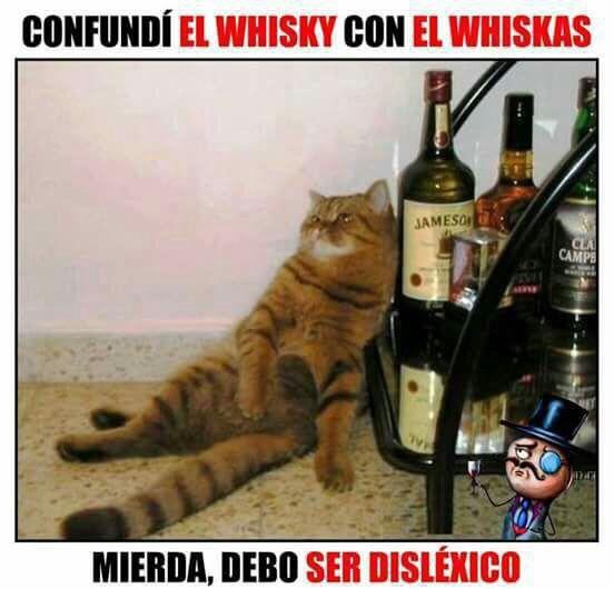 #toquedehumor #comico                                                                                                                                                                                 Más