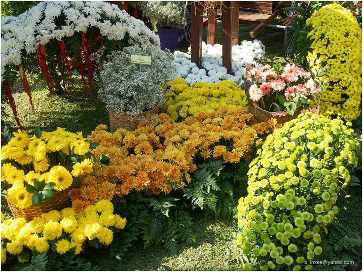 17 Best 1000 images about Flower Festivals Home Garden Shows on