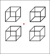 Necker cube: Fixate on the red appearing dot. The two dimensional drawings give an appearance of three dimensional cubes. Ambiguity exists in the three dimensional information and as you continue to look, you will see a shift. Note which surface appears closest in each cube. Do the cubes shift independently or as a unit? What is the importance of the way that they shift?