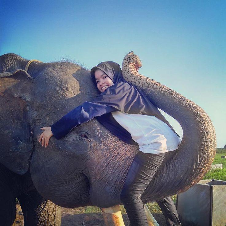 Pertama kali duduk dibelalai makhluk besar ini dan bisa meluk kepalanya tapi apa daya ukuran tangan gue buat meluk dia ga berbanding lurus dengan ukuran kepalanya  tapi cinta gue buat dia lebih besar dari ukuran tubuhnya  see you when i see you again Haryono!!  . Terimakasih TNWK udah ijinin gue untuk bisa lebih deket sama makhluk besar ini  . #elephasmaximus #elephasmaximussumatranus #waykambas #waykambasnationalpark #tamannasionalwaykambas #lampung #lampungtimur #veterinarian #veteriner