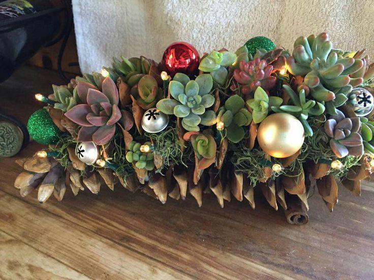 17 Best Images About Succulent Crafts On Pinterest