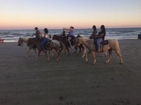 Galveston Island Horse & Pony Rides, Galveston Island: See 16 reviews, articles, and 61 photos of Galveston Island Horse & Pony Rides, ranked No.31 on TripAdvisor among 71 attractions in Galveston Island.