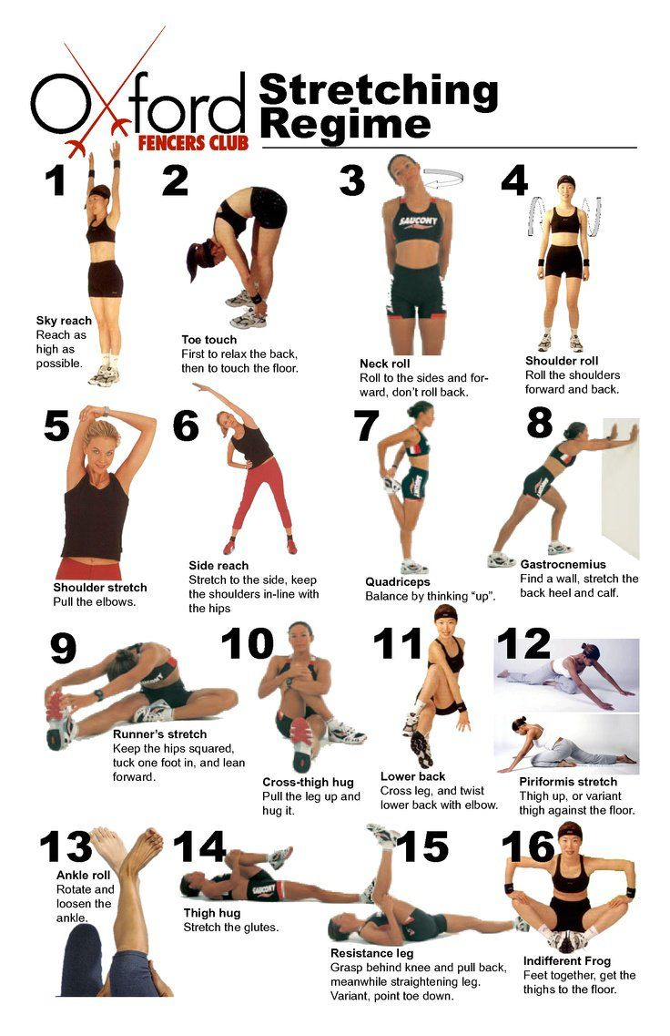 16 Weight Training Stretching Regime. Muscles that are warmed up before being put under a sudden stress are more likely to be able to handle the stress. Str