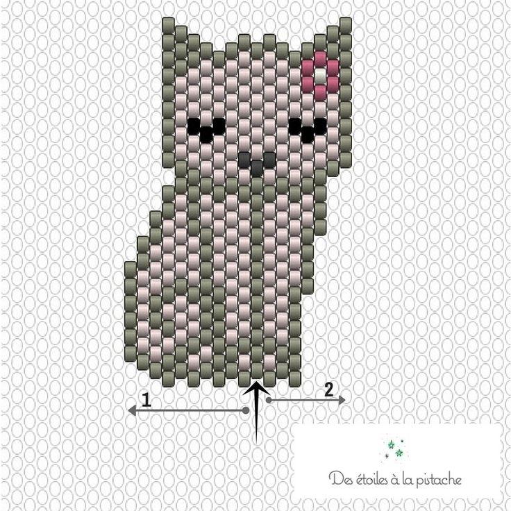 CHAT-DIAGRAMME-TUTO.jpg (800×800)