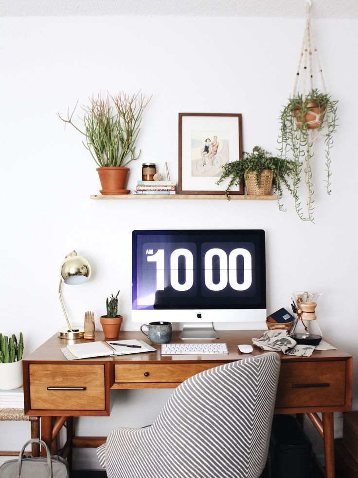 Urban Outfitters - Blog - UO Guide: Hanging Plant How-Tos
