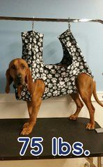 Best 25 Dog Hammock Ideas On Pinterest Dog Cover For