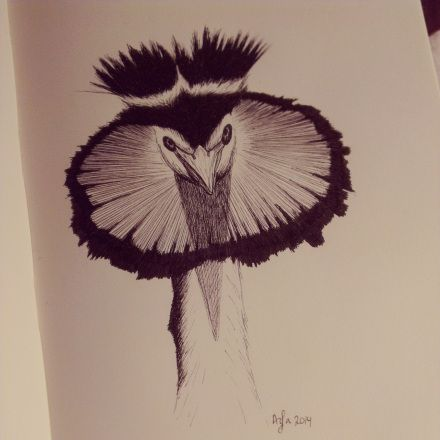 Day 17, #100daysofdoodling, a Great crested grebe (Fuut) by Ayla Paul