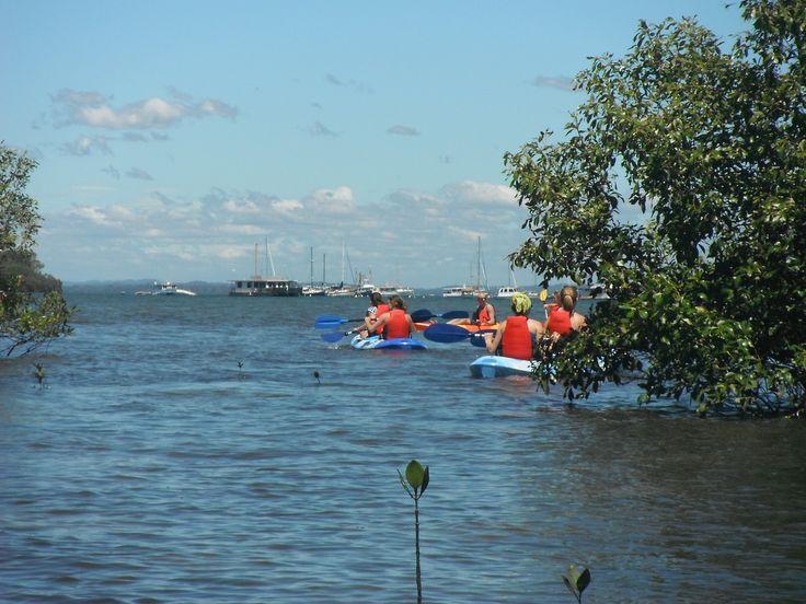 Kayak Tour on Straddie